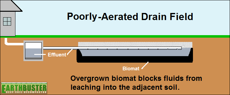 Poorly-Aerated Drain Field