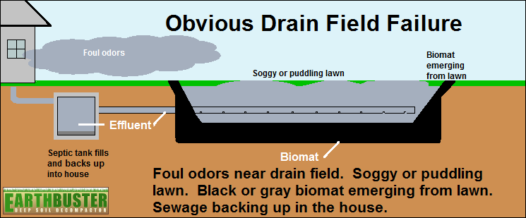 Obvious drain field failure